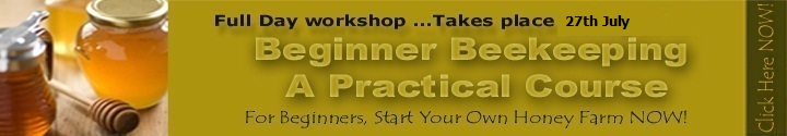 Beekeeping course 29th Sept near Lanseria
