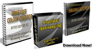 Practical Beekeeping bee book set