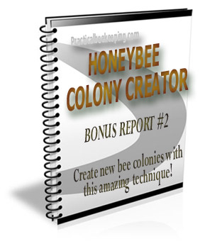 Honeybee Colony Creator