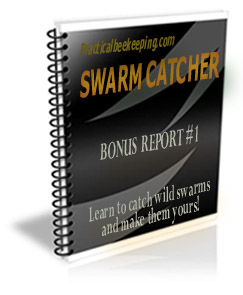 Swarm Catcher