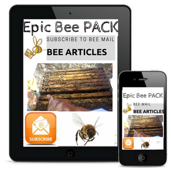 Get News, Tips & Free Articles on Beekeeping